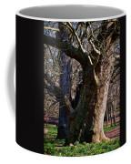 Springtime In Rome Coffee Mug