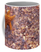 Starfish On The Beach, Lovers Key State Coffee Mug