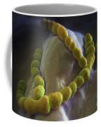 Streptococcus Pneumoniae Coffee Mug