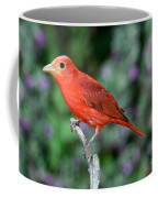 Summer Tanager Coffee Mug