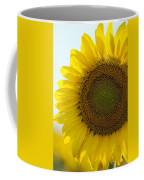 Sun Kissed Coffee Mug