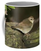 Swainsons Warbler Coffee Mug