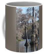 Swampreflection  Coffee Mug