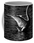 Swan Wingspan Coffee Mug