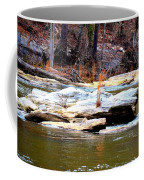 Sweetwater Creek Coffee Mug