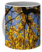 Tabebuia Tree Blossoms Coffee Mug