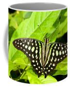 Tailed Jay Butterfly Coffee Mug