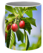 Tart Cherries Coffee Mug