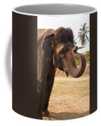 Temple Elephants Maharaja's Palace India Mysore Coffee Mug