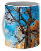 Texture Of The Bark. Old Oak Tree Coffee Mug