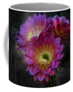 The Beauty Of The Desert  Coffee Mug