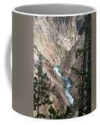 The Canyon Coffee Mug