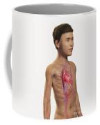 The Cardiovascular System Pre-adolescent Coffee Mug