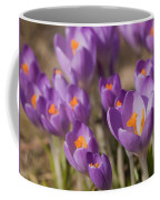 The Crocus Flowers Coffee Mug