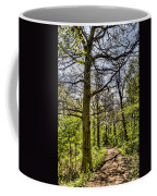 The Forest Path Coffee Mug by David Pyatt