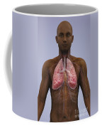 The Lungs And Cardiovascular System Coffee Mug