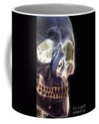The Skull And Paranasal Sinuses Coffee Mug