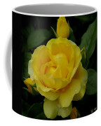 Yellow  Rose Of Summer Coffee Mug