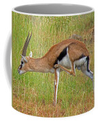 Thomson's Gazelle Coffee Mug
