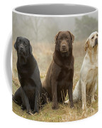 Three Kinds Of Labradors Coffee Mug
