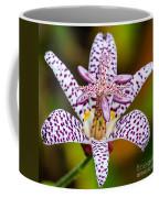 Toad Lily Coffee Mug