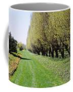 Trees Along A Walkway In A Botanical Coffee Mug