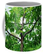 Trees In A Park, Adams Park, Wheaton Coffee Mug