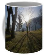 Trees In Backlit Coffee Mug