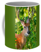 Trophy Buck In Velvet Coffee Mug