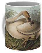 Trumpeter Swan Coffee Mug by John James Audubon