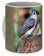 Tufted Titmouse Parus Bicolor Coffee Mug