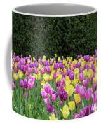 Tulip Flowers In A Garden, Chicago Coffee Mug