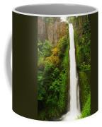 Tunnel Falls  Coffee Mug
