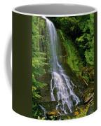 Twin Falls Creek Mount Rainier Coffee Mug