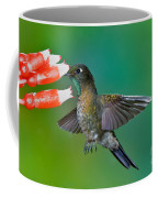 Tyrian Metaltail Coffee Mug