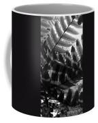 1 V Na Fern Zz Bw Coffee Mug