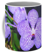Vanda Orchid Coffee Mug