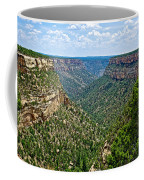 View From Sun Temple In Mesa Verde National Park-colorado  Coffee Mug