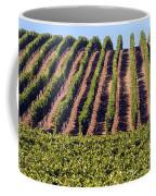 Vineyard Rows Coffee Mug