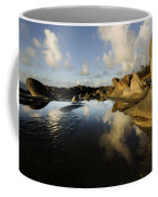 Visions Of Nature 6 Coffee Mug