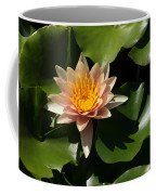 Exotic Colors - A Soft Coral Waterlily Coffee Mug