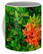 West Indian Jasmine In Sukhothai Historical Park-thailand Coffee Mug