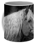 Western Horse In Alberta Canada Coffee Mug