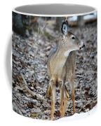 What Was That Coffee Mug