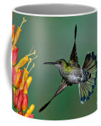 White-necked Jacobin Coffee Mug