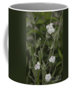 White Rose Campion Coffee Mug