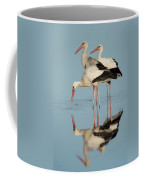 White Storks Ciconia Ciconia In A Lake Coffee Mug