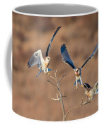 White-tailed Kite Siblings Coffee Mug