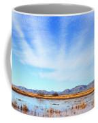 White Water Draw Preserve Coffee Mug