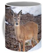 Whitetail Coffee Mug